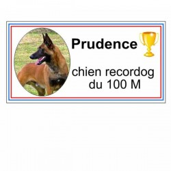 Plaque chien rectangle personnalisable