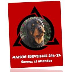 Plaque surveillance 24h/24