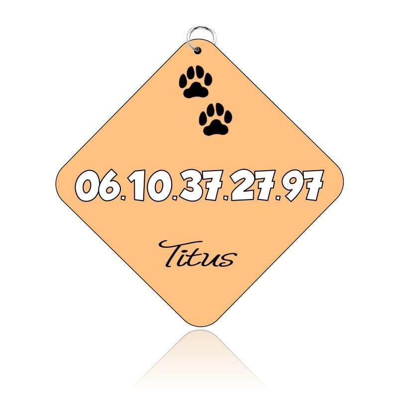 Médaille pour chien personnalisable