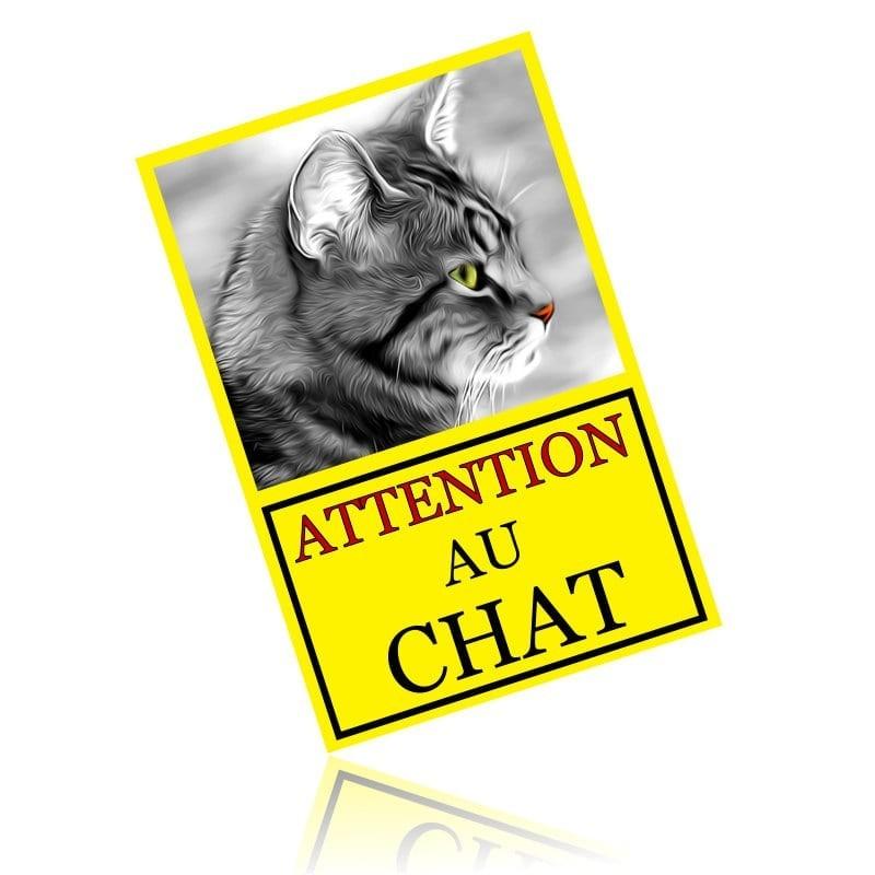 Plaque chat personnalisé