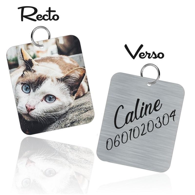 Médaille d'identification pour chat
