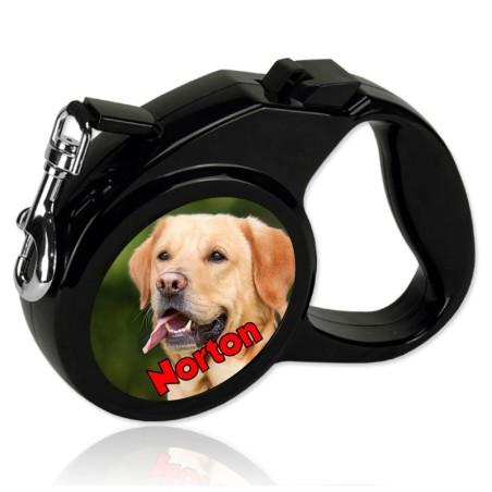 Laisse chien personnalisée
