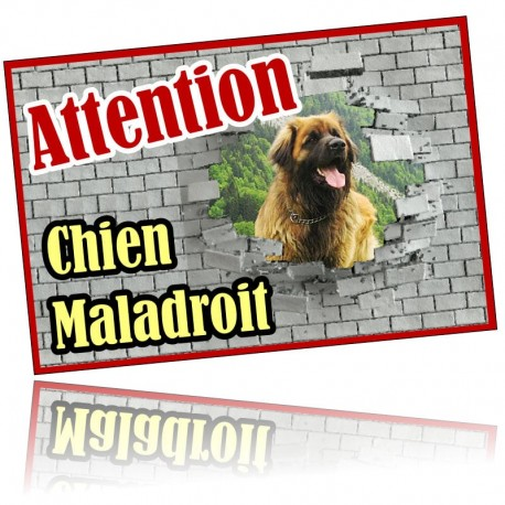 Attention chien maladroit