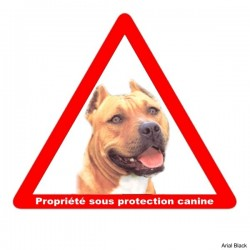 Plaque triangulaire attention chien